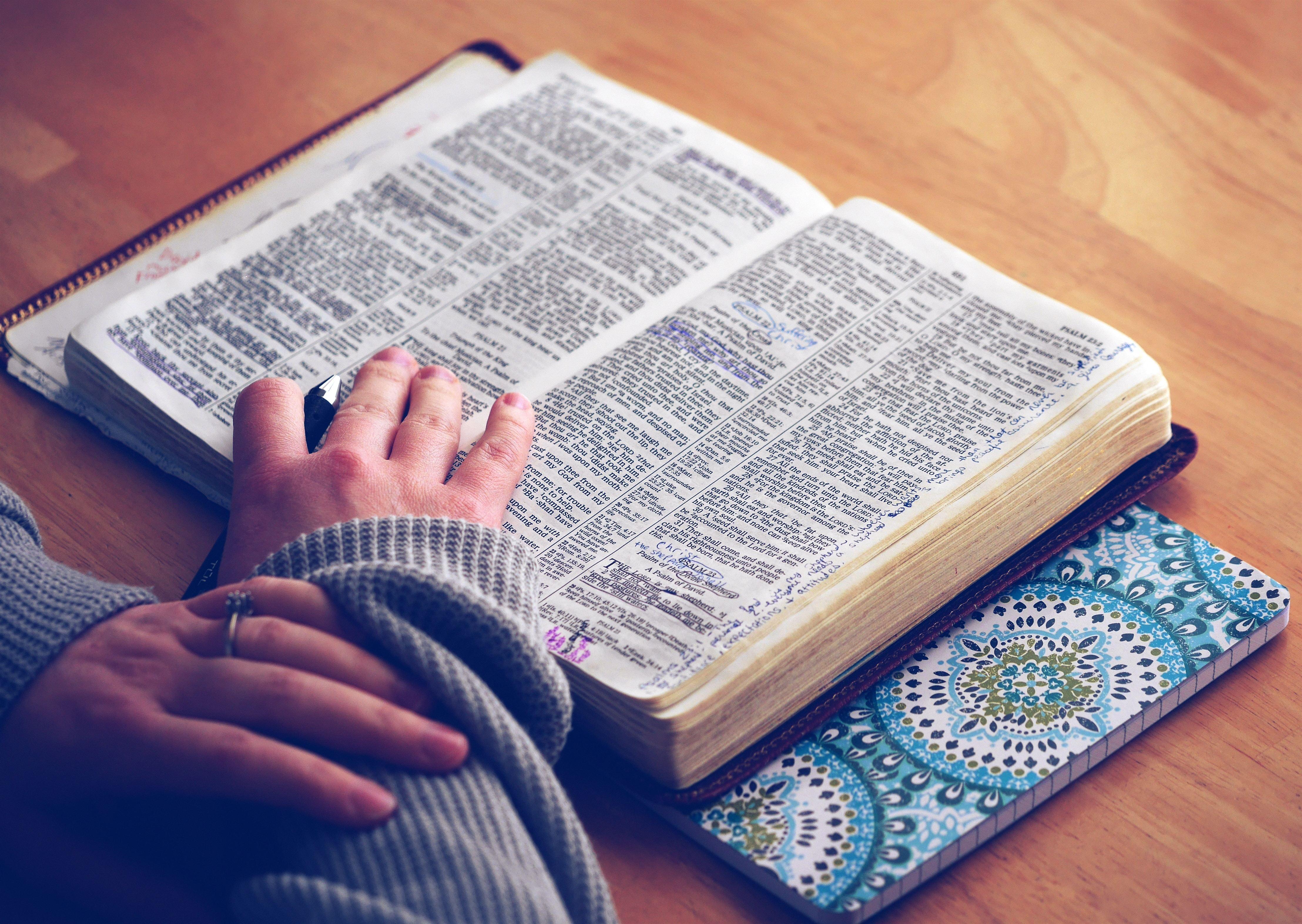 英語の辞書を見る女性の手